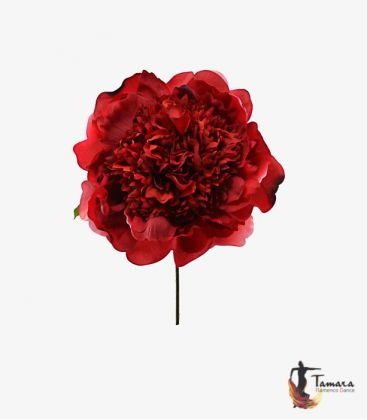 flowers flamenco - - Flower Peonia woman for flamenco