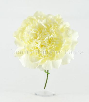 flowers flamenco - - Big Flower Peonia