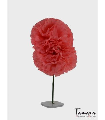 flowers flamenco - - Couple of carnations